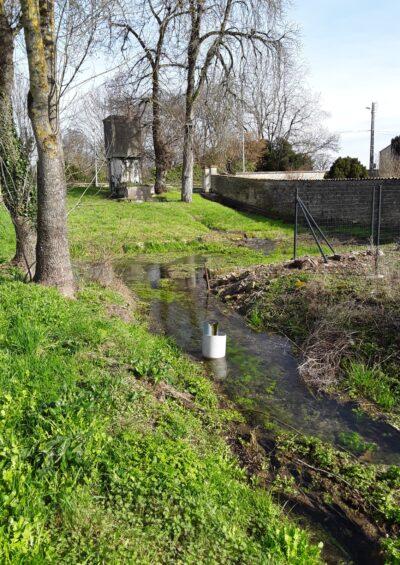 Source et faciès du Ruisseau d'Orlut.